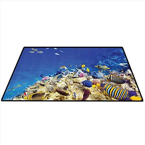 Ocean Decor Print Area Rug Underwater Life Wilderness Caribbean Ocean Vacation in Tropics Seascape Theme Image Artwork Indoor/Outdoor Area Rug 3'x4' (W90cmxL120cm) Blue Beige