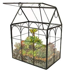 ELEGANTLIFE Glass Geometric Plant Terrarium,Succulent & Air Planter for Home Garden Office Decoration