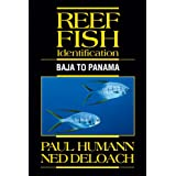 Reef Fish Identification: Baja to Panama