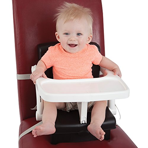 Dreambaby Portable Booster Hi Seat, Black by Dreambaby (Image #4)