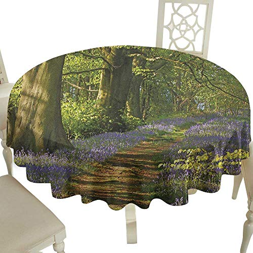 100% Polyester Round Tablecloth 60 Inch Woodland,A Carpet of Bluebells Spreads Through Woodland in Staffordshire England Green Purple Brown Great for,Outdoors & More