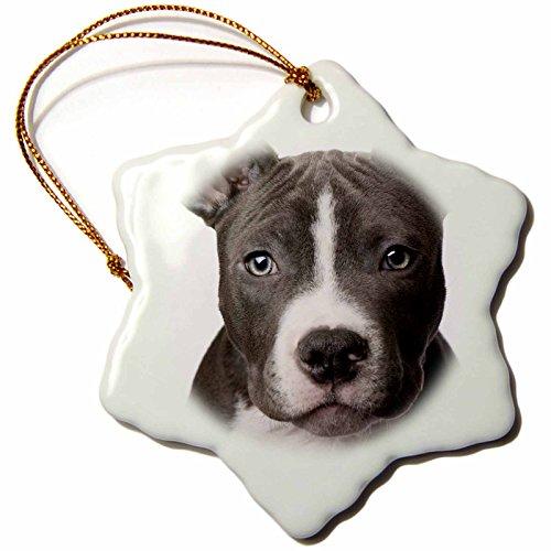 American Terrier Snowflake Porcelain Ornament