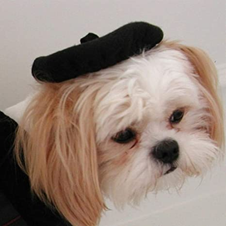 Jilin Solid Color Pet Fashion Beret Cat Dog Warm Cute Hood All-Match Headpiece