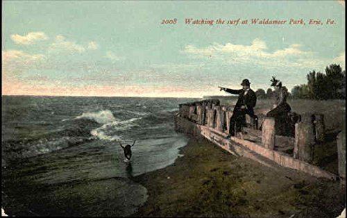 Watching the Surf at Waldameer Park Erie, Pennsylvania Original Vintage Postcard (Park Waldameer)