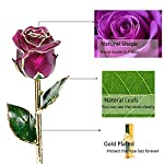 Icreer-24K-Artificial-Purple-Rose-Flower-Gold-Dipped-Roses-with-Crystal-Stand-Gifts-for-AnniversaryBirthdayValentines-DayWeddingPresents-for-HerMomWifeGirlfriendLover