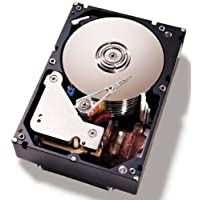 Lenovo System X 81Y9806 1TB NL SATA 3.5 HDD