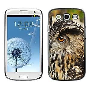 Super Stella Slim PC Hard Case Cover Skin Armor Shell Protection // M00146559 Eurasian Eagle Owl Bird Owl Head // Samsung Galaxy S3 S III SIII i9300