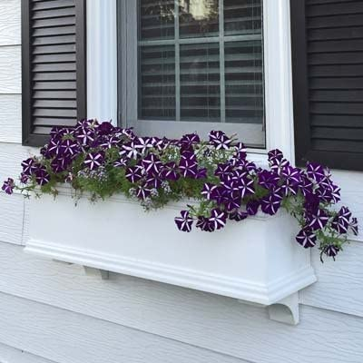 FlowerWindowBoxes.com 36 Charleston PVC Self-Watering Window Box – No Rot w 2 Brackets