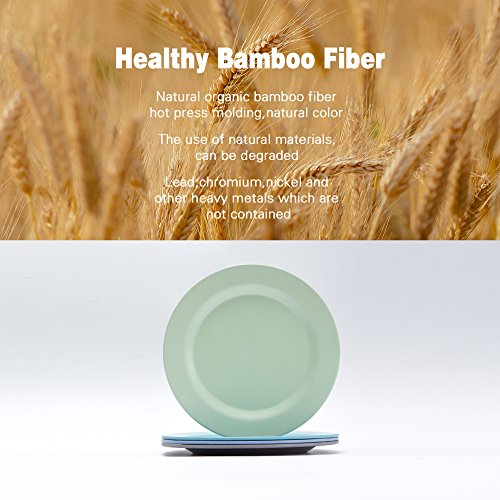 4pcs Bamboo Kids Plates for Baby feeding,Non Toxic & Safe Toddler Plates, Eco-Friendly Tableware for Baby Toddler Kids Bamboo Toddler Dishes & Dinnerware Sets,01 by HM-TECH