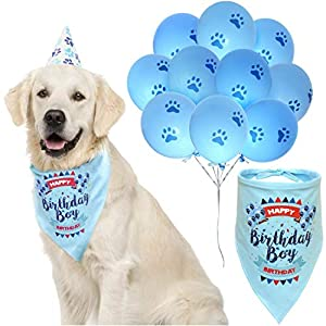 ZOOniq Dog Birthday Boy Bandana with Paw Print Party Cone Hat and 10 Balloons - Great Dog Birthday Outfit and Decoration Set - Perfect Dog or Puppy Birthday Gift 1