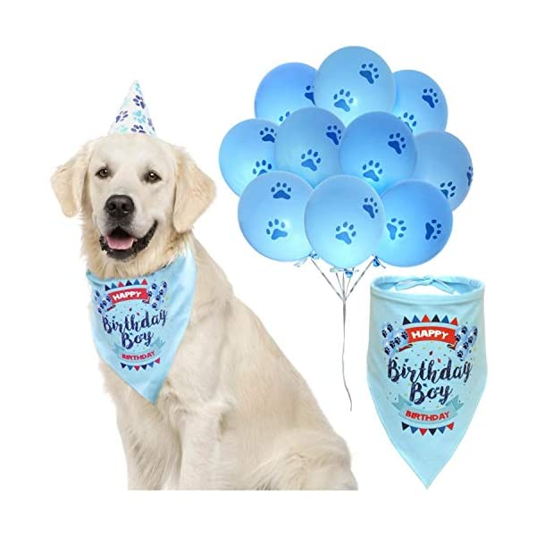 ZOOniq Dog Birthday Boy Bandana with Paw Print Party Cone Hat and 10 Balloons – Great Dog Birthday Outfit and Decoration Set – Perfect Dog or Puppy Birthday Gift