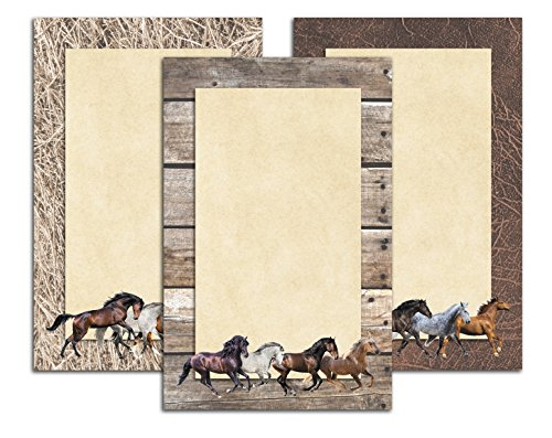 (Running Horses Notepads in Full Color - 3 Pack - Equestrian Stationary Gift - 5.5