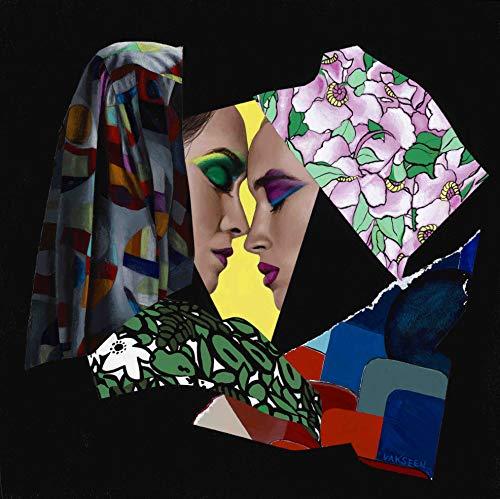 Vakseen Art - Intricate Mesh - Vanity Pop - collage portrait art - Limited Edition Giclee Print & Framed Pop Art for Wall Decor