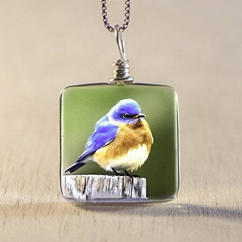 Handmade Glass Bird Necklace on Sterling Silver: Original Bluebird Image Fused to Artisan Made Pendant on Italian Sterling Silver Box - Chain Brighton Glasses