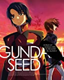 Mobile Suit Gundam SEED (English Subtitles) HD Remaster Blu-ray Box 3 [Limited Edition] [Blu-ray]
