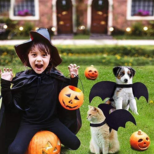 Cat Bat Costume,Halloween Cat Bat Wings for Pets,Cat Halloween Collar Pet Apparel for Small Dogs and Cats,Comfort Material Pet Costume for Halloween (Cat Bat Costume) 21