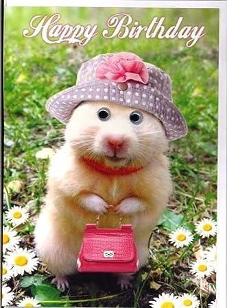 Tarjeta De Cumpleaños Feliz Cumpleaños Chistosa Hamster Conejillo