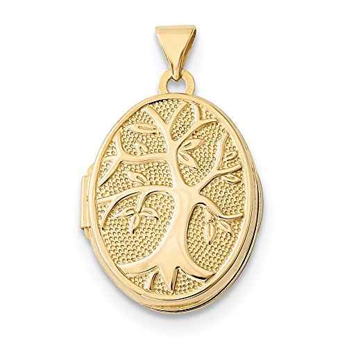 14k Yellow Gold 21x16mm Oval Tree Locket 16 Mm Oval Locket