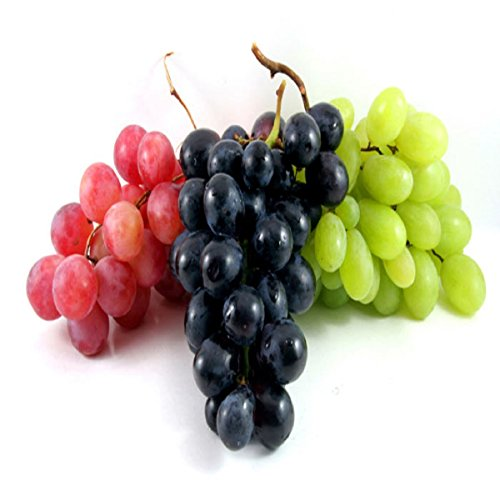 GRAPE FRAGRANCE OIL - 2 OZ - FOR CANDLE & SOAP MAKING BY VIRGINIA CANDLE SUPPLY - FREE S&H IN USA