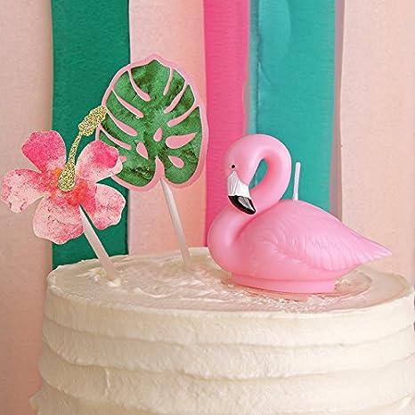 Amazon.com: Flamingo Vela de cumpleaños decoración para ...