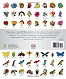 Natural History: The Ultimate Visual Guide to