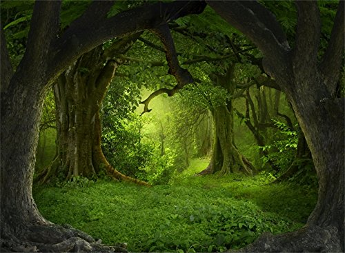 Leowefowa 7X5FT Green Jungle Forest Backdrop Dreamland Old Trees Backdrops Green Grassland Vinyl Photo Background Kids Adults Portraits Studio Props