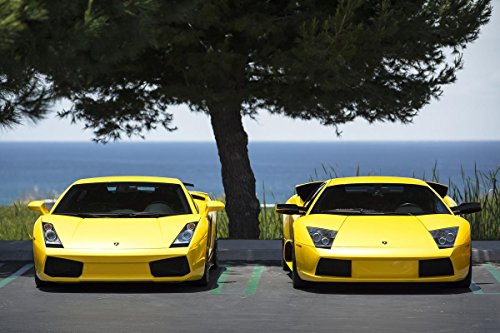 Quality Prints - Laminated 36x24 Vibrant Durable Photo Poster - Lamborghini Gallardo and ()