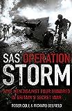 SAS Operation Storm: Nine Men Against Four Hundred in Britain's Secret War