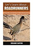 Roadrunners: Amazing Pictures and Facts About Roadrunners (Let's Learn About)