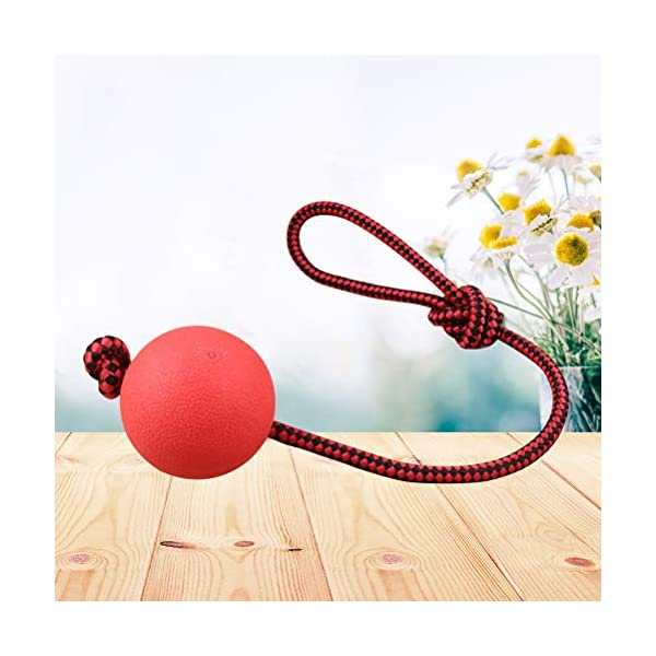 Ball and Rope Dog Toy-Dog Ball on String-Rope Rubber Solid Elastic Ball Bite-Resistant Pets Supplies Molar Training Tool for Dog Puppy 2