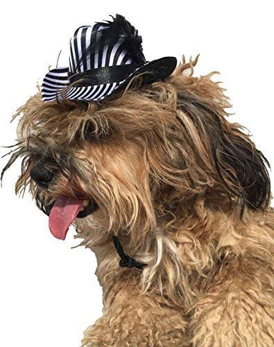 Pet Girl Boy Dog Cat Zebra Animal Pimp Party Hat Fancy Dress Costume Outfit]()