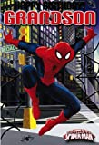 Ultimate Spiderman Birthday Card - Grandson
