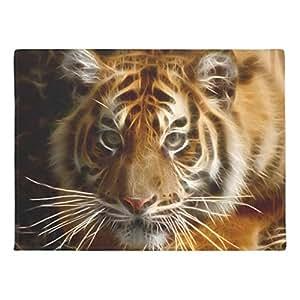 ailovyo tigre imaginación Portray goma antideslizante entrada camino al aire libre decoración de interior alfombra Doormats, 23.6x 15.7-inch