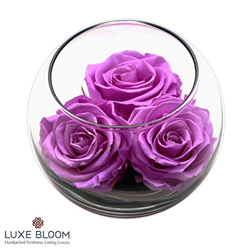 Luxe Bloom Orchid Preserved Roses | Lasts 60 days | 3 Orchid (purple) roses & greens in a 4