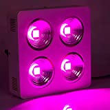 Cheap Roleadro 800W COB LED Grow Light 9 Band for Plants Growing
