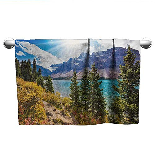Bensonsve Landscape,National Park Banff Canadian Rockies Mountain Trees Glacial Lake Sunny Sky,Aqua Mauve Green,Suction Towel bar for Shower