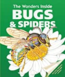 Bugs and Spiders, Jan Stradling, 1571459073