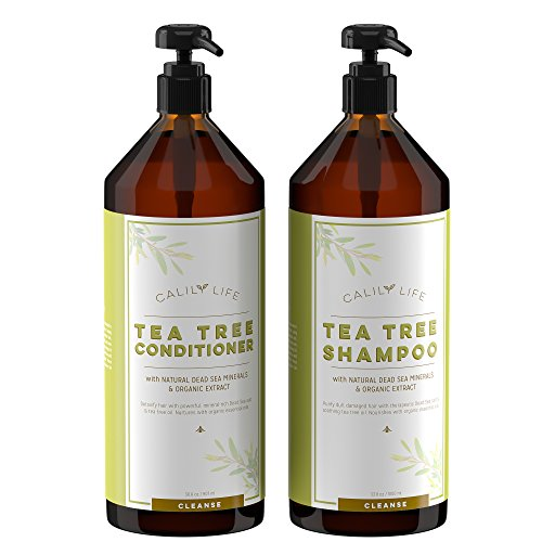 Calily Life Organic Tea Tree Shampoo + Conditioner with Dead Sea Minerals, Duo Set, 30.5 Oz. Each – Concentrated Extra-strength Formula - Removes Impurities, Refreshes, Softens and Invigorates