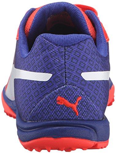 PUMA Womens Evospeed Haraka V3 Wn Running Shoe Red Blast/Royal Blue k64JX
