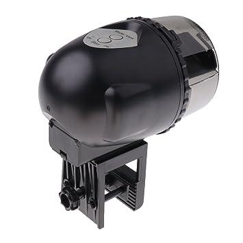 Baoblaze Alimentador Automático de Alimentos para Peces Dispensador de Comida Accesorios Duradero: Amazon.es: Productos para mascotas