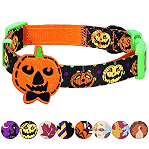 Blueberry Pet 8 Patterns Fall Halloween Thanksgiving Designer Dog Collars or 2 Patterns Collar Cover for Pet Collars with Decoration