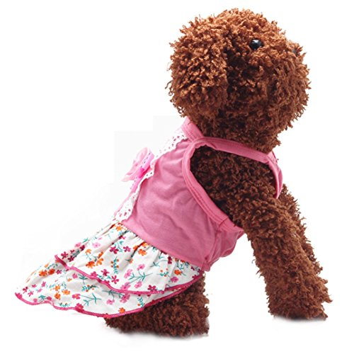 Image of Binmer(TM)Pet Dog Clothes Puppy Flower Skirts Dress Crystal Bowknot Lace Floral Pet Princess Clothes (M)