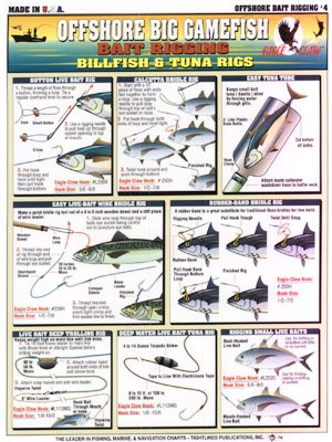 H - BILLFISH & TUNA - Tightlines Chart #4 (How To Rig Live Bait)