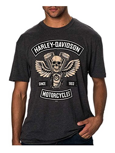 Winged Skull T-shirt - Harley-Davidson Men's Winged Skull Engine Short Sleeve T-Shirt, Charcoal (M)
