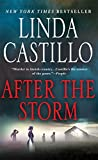 img - for After the Storm: A Kate Burkholder Novel book / textbook / text book