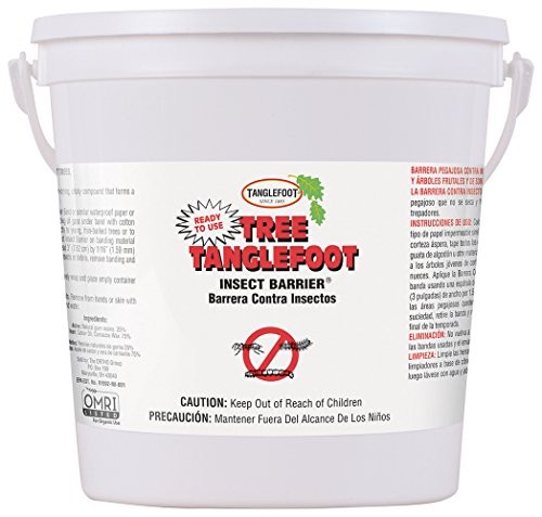 (Tanglefoot Tree Insect Barrier Pail)