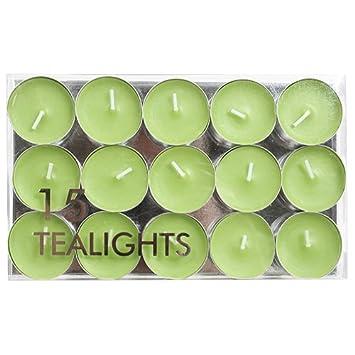 Village Candle Tl008Cire sans parfum avec Motif Premium Tealights Lumière Vert 19, 1 x 11, 6 x 2 cm