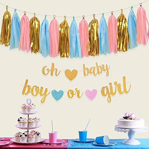 Gender Reveal Party Decorations - Glitter Letters OH BABY and BOY OR GIRL With Hearts Banner, Tissue Paper Tassels Garland Set for Baby Shower Party Decorations by Aonor (Image #3)