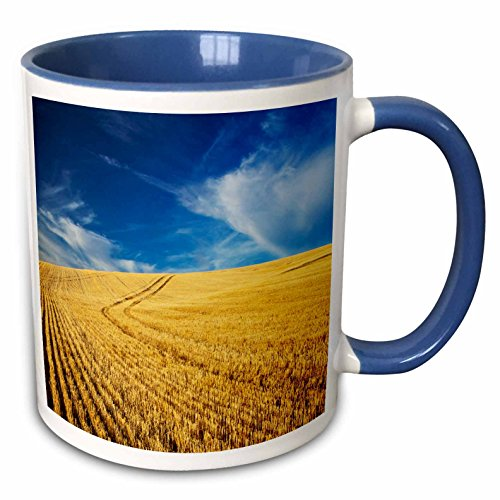3dRose Danita Delimont - Farms - Farm Fields, Harvest Wheat, Palouse, Washington, USA - US48 TEG0425 - Terry Eggers - 11oz Two-Tone Blue Mug (mug_148727_6)