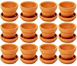 Juvale Small Terra Cotta Pots with Saucer- 12-Pack Clay Flower Pots with Saucers, Mini Flower Pot Planters for Indoor, Outdoor Plant, Succulent Display, Brown - 2.7 x 2.5 inches